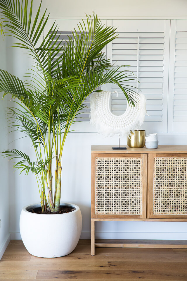 rattan wicker sideboard